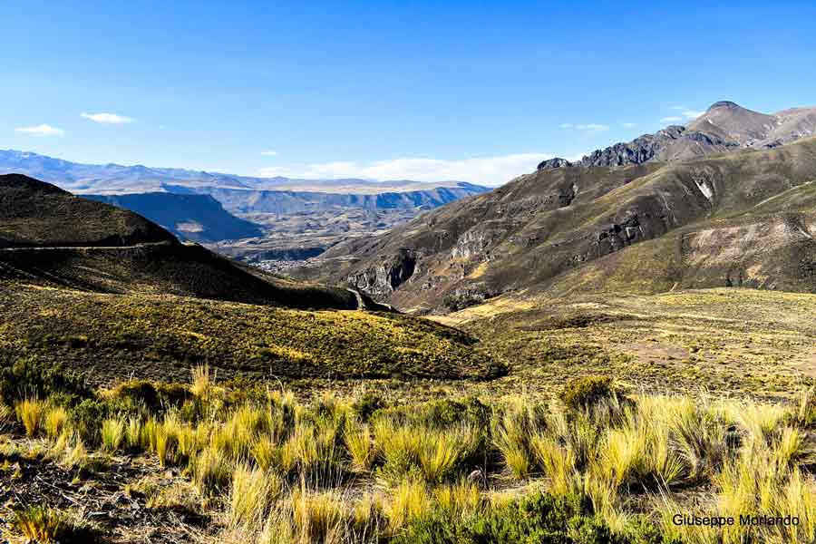 cusco puno circuit machu picchu living tour 15 days