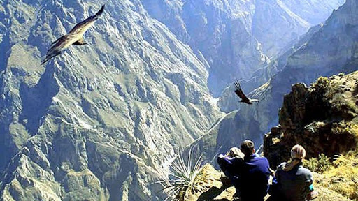 peru packages 19 day colca canyon