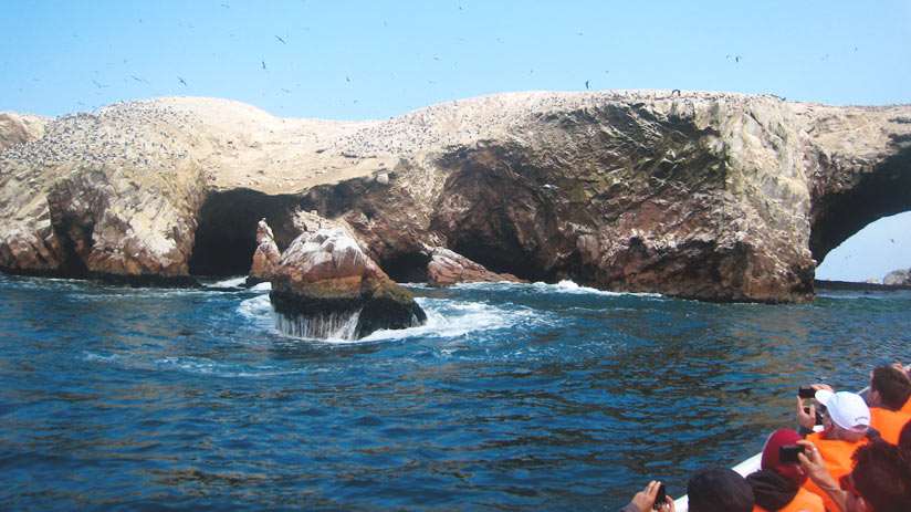 paracas peru 12 days circuit tour